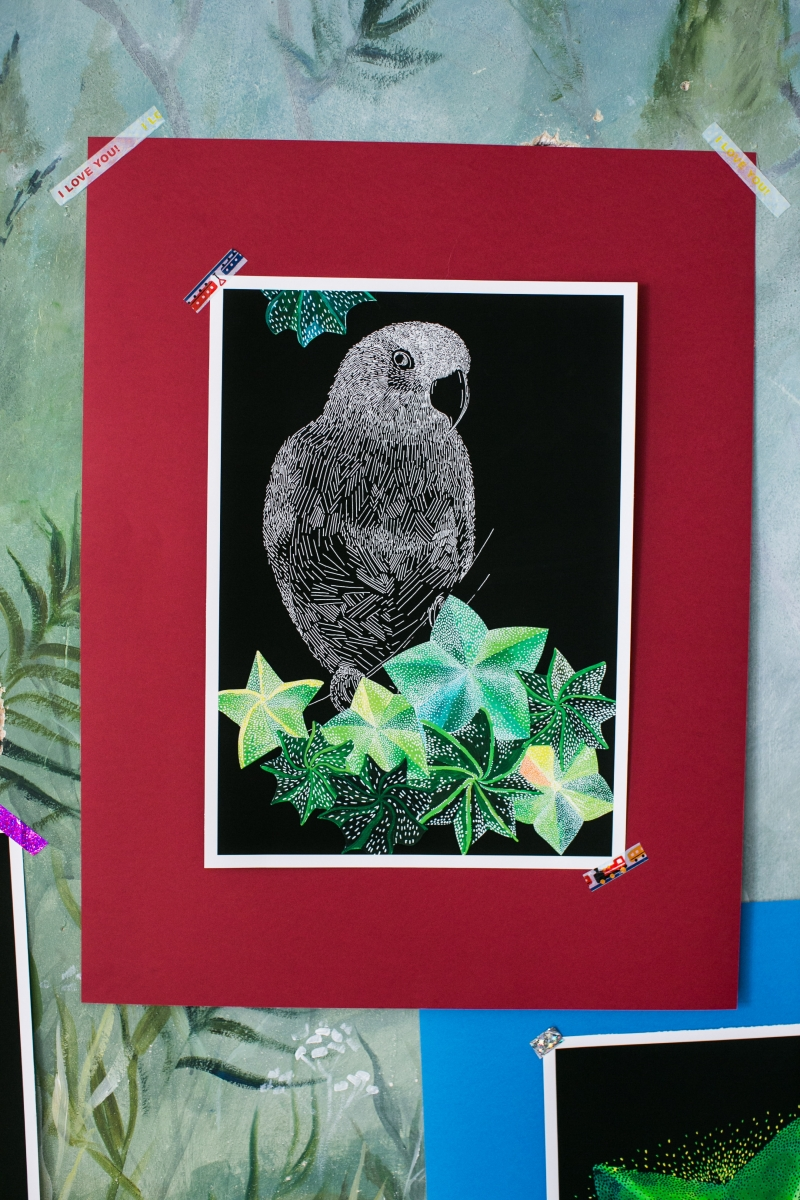 Попугай и кактус